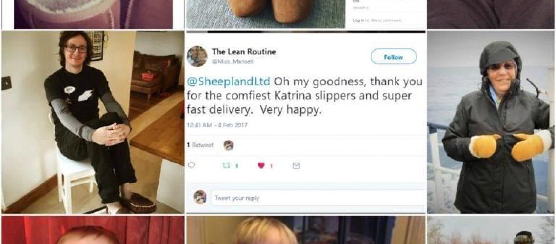Sheepland Sheepskin Blog 63