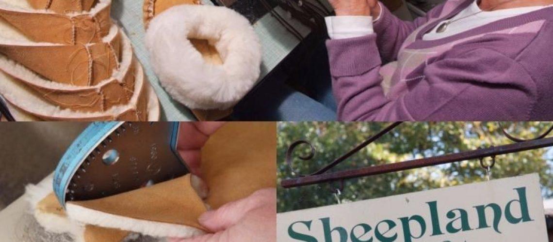 Sheepland Sheepskin Blog 65